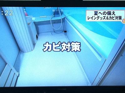 BBTスーパーニュース☆夏への備え写真1