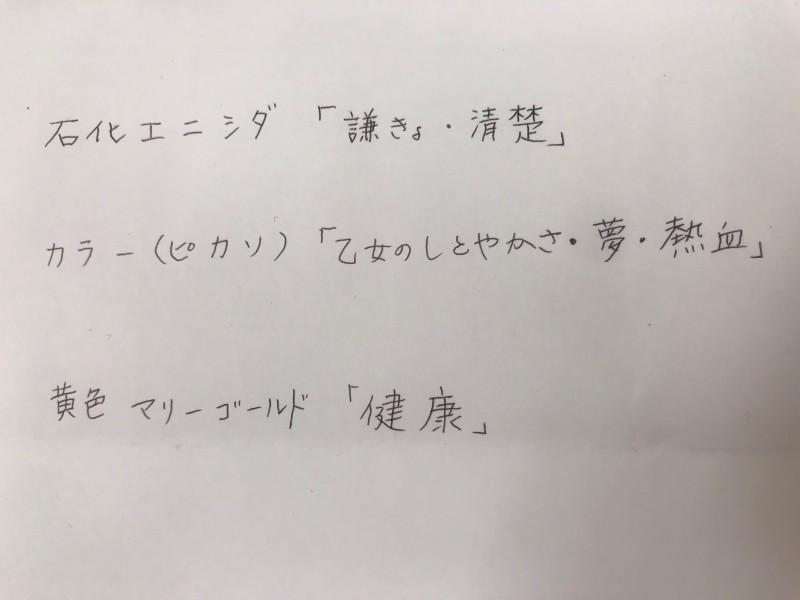 エントランスフラワー☆花言葉編☆写真5